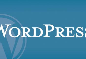 Bir Sitenin WordPress Olduğunu Anlamak?