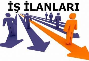 İzmir ve Manisa İş İlanları Bilgilendirme